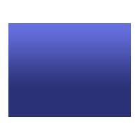 nefro-icon
